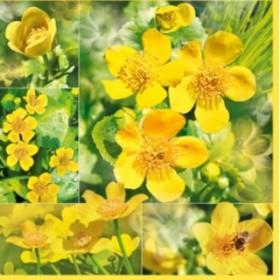 Maki Peçete Sarı Çiçekler SLWI-003901 Özel Desen 33x33cm