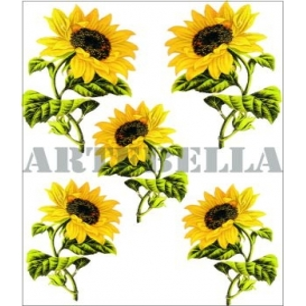 Artebella 1265 Küçük Kolay Transfer Koyu Zemin 17x24 cm