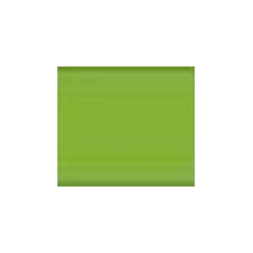 Lefranc & Bourgeois Light Green Fine Yağlı Boya 40ml