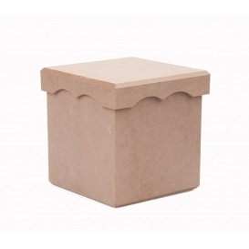 Saklama Kutusu Kapaklı Orta 14x14cm