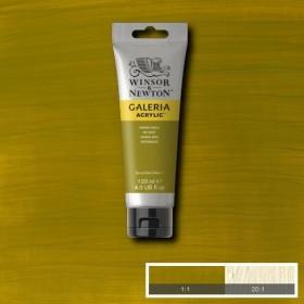 Winsor & Newton Galeria Akrilik Boya 120 ml. 294 Green Gold