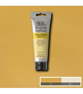 Winsor & Newton Galeria Akrilik Boya 120 ml. 422 Naples Yellow