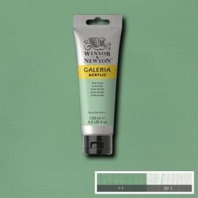 Winsor & Newton Galeria Akrilik Boya 120 ml. 435 Pale Olive