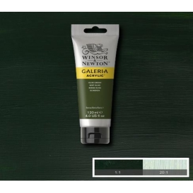 Winsor & Newton Galeria Akrilik Boya 120 ml. 447 Olive Green