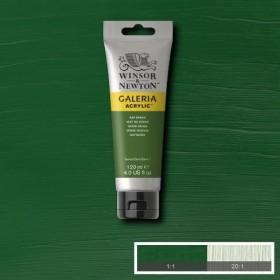 Winsor & Newton Galeria Akrilik Boya 120 ml. 599 Sap Green