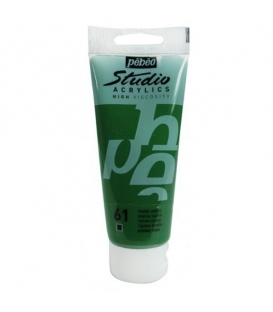 Pebeo Studio Akrilik Boya 100ml. 61 Green Earth