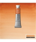 074 Burnt Sienna Winsor & Newton Artists Sulu Boya 5 ml