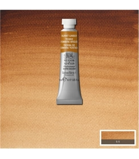 076 Burnt Umber Winsor & Newton Artists Sulu Boya 5 ml