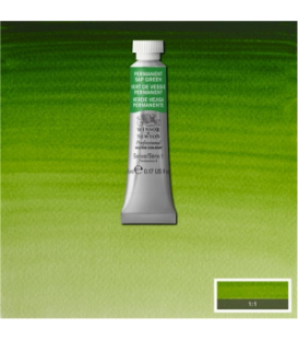 503 Permanent Sap Green Winsor & Newton Artists Sulu Boya 5 ml
