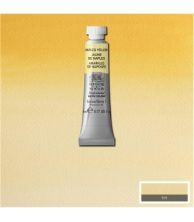 422 Naples Yellow Winsor & Newton Artists Sulu Boya 5 ml