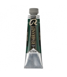 629 Green Earth Rembrandt Yağlı Boya 40 ml