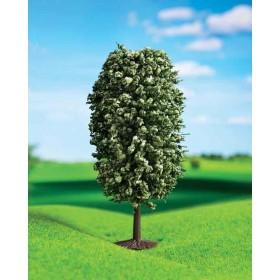 Yeşil Dağ Çamı 10 cm 2 li