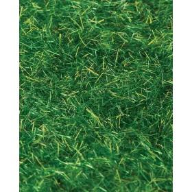 Yeşil Toz Çim 20 Gr