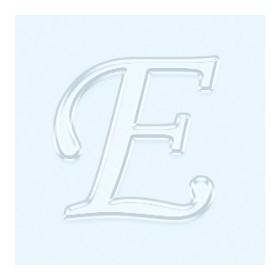 Pleksi Ayna Görünüm 4cm Harf E