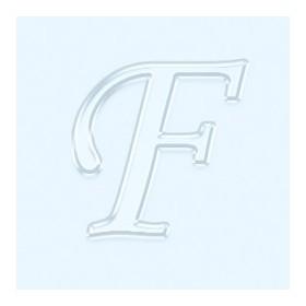 Pleksi Ayna Görünüm 4cm Harf F