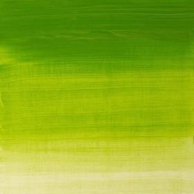 11 CHROME GREEN HUE Winsor & Newton Winton Yağlı Boya