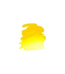 108 Cadmium Yellow Winsor & Newton Artists Sulu Boya 5 ml