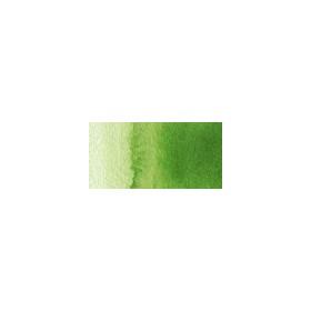 Talens Van Gogh 1/2 Tablet Sulu Boya 623 Sap Green