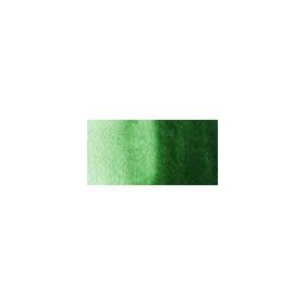 Talens Van Gogh 1/2 Tablet Sulu Boya 645 Hooker Green Deep