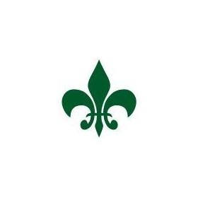 Cadence Cam ve Seramik Boyası Metalik 82 Yeşil