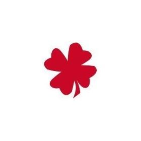 Cadence Cam ve Seramik Boyası Transparan-Şeffaf 04 Ateş Kırmızısı